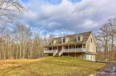 Ulster County Single Family Home For Sale: 6 Owl Ridge Road