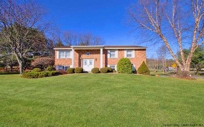 Ulster County Single Family Home For Sale: 356 Orchard Road