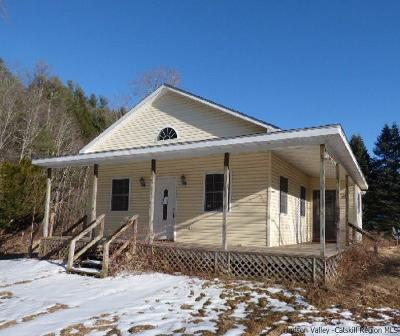 Greene County Single Family Home For Sale: 11718 Route 23a