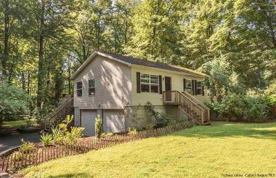 Dutchess County, Orange County, Sullivan County, Ulster County Single Family Home For Sale: 241 Grist Mill Road