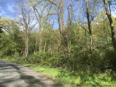 Dutchess County, Orange County, Sullivan County, Ulster County Residential Lots & Land For Sale: 32-52 Elisa Landi Drive