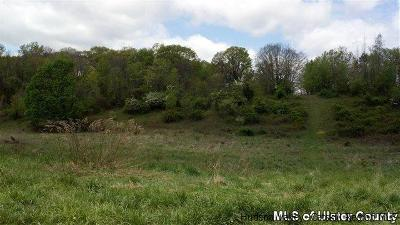 Residential Lots & Land Fully Executed Contract: Bellevue Road