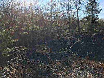 Saugerties Residential Lots & Land For Sale: Echo Hill