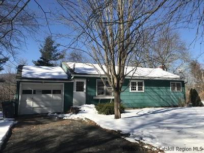 Saugerties Single Family Home For Sale: 49 George Saile Road