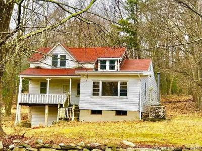 Pine Bush Single Family Home Fully Executed Contract: 217 Church Road