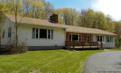 Catskill Single Family Home For Sale: 1335 High Falls Road