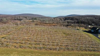 Ulster County Residential Lots & Land For Sale: 50 Palazzo Lane