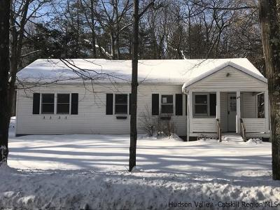 Saugerties Single Family Home For Sale: 49 Manorville Road