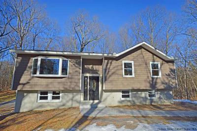 New Paltz NY Single Family Home For Sale: $349,000
