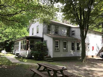 Greene County Multi Family Home For Sale: 5 Pine Avenue