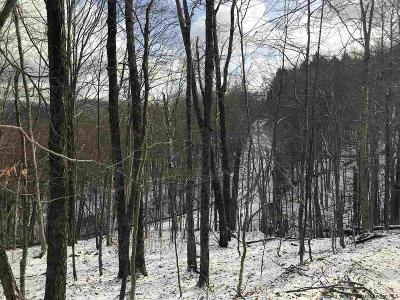Delaware County Residential Lots & Land For Sale: Mill Brook Road