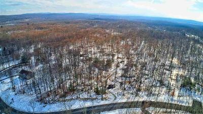 Ulster County Residential Lots & Land For Sale: 13 Stone Oaks Drive