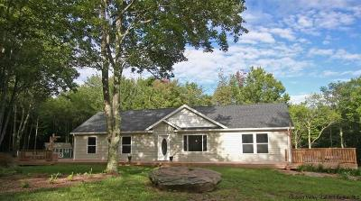 Delaware County Single Family Home For Sale: 668 Skyline Drive