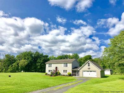 Ulster County Single Family Home For Sale: 34 Tan House Brook Road