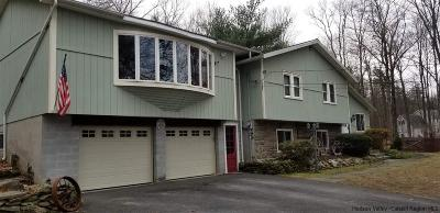 New Paltz NY Single Family Home For Sale: $319,000