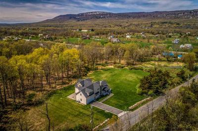 New Paltz NY Single Family Home For Sale: $695,000