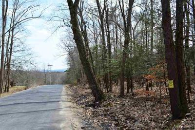 Ulster County Residential Lots & Land For Sale: Bone Hollow Road