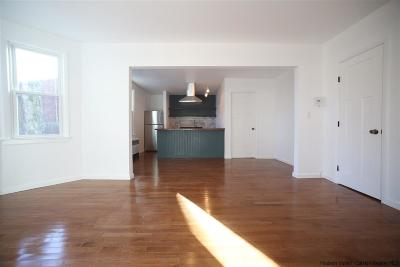 Ulster County Rental For Rent: 15 Prospect Street #Apt 3