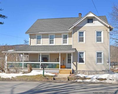 Ulster County Rental For Rent: 55-57 North Road