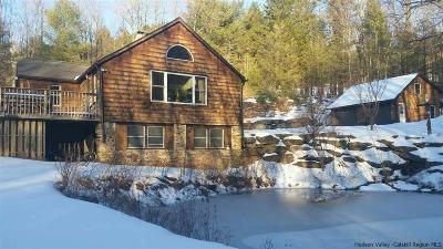 Ulster County Single Family Home For Sale: 12 Campbell Road