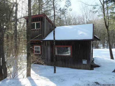 Ulster County Single Family Home For Sale: 259 Silver Hollow Road