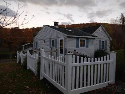 Ulster County Rental For Rent: 204 Schultz Lane