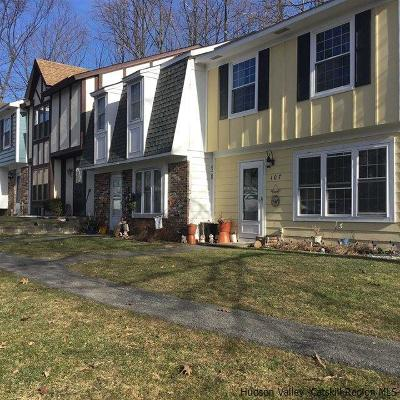 Ulster County Townhouse For Sale: 107 Vista Drive