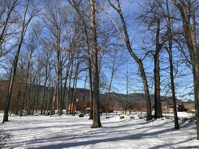 New Paltz Residential Lots & Land For Sale: Vista Drive