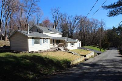 Ulster County Single Family Home For Sale: 12 Brodhead Road