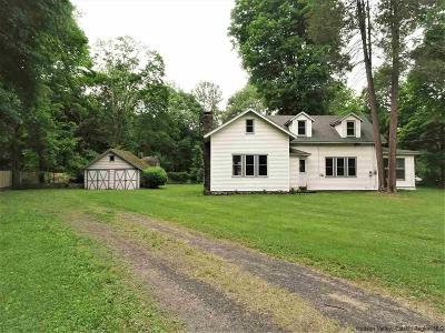 Ulster County Single Family Home For Sale: 613 Kings Highway