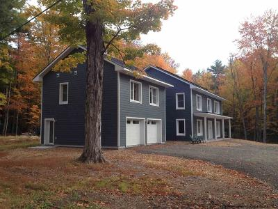 Woodstock NY Single Family Home For Sale: $1,150,000