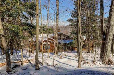 Greene County Single Family Home For Sale: 1019 Tree Tops Road