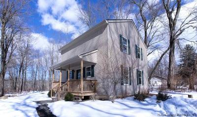 Single Family Home For Sale: 91 Old Route 299