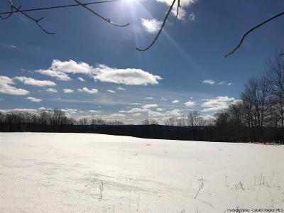 Delaware County Residential Lots & Land For Sale: Shaver Hill Road