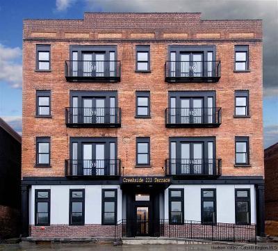Kingston Rental For Rent: 111 Abeel Street #4