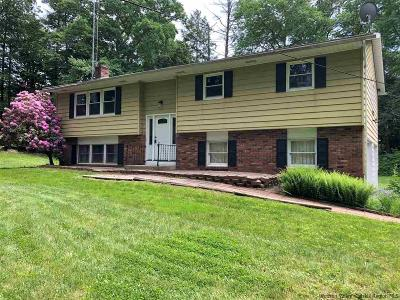 Saugerties Single Family Home For Sale: 873 Glasco Turnpike