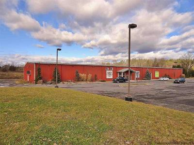 Commercial For Sale: 5164 Route 209
