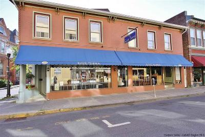 Kingston Commercial For Sale: 288 Fair Street
