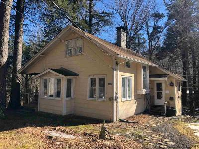 Phoenicia Single Family Home For Sale: 1397 Woodland Valley Road