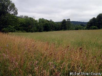 Saugerties Residential Lots & Land For Sale: 30 Beaverkill Road