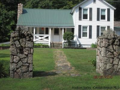 Ulster County Single Family Home For Sale: 425 Camp Road
