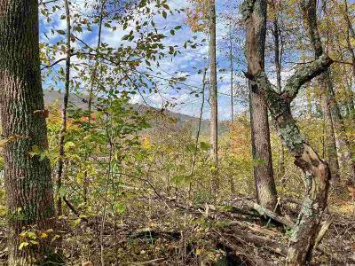 Delaware County Residential Lots & Land For Sale: County Hwy 6