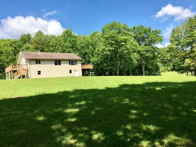 Ulster County Single Family Home For Sale: 393 Dowe Rd