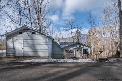 Dutchess County, Orange County, Sullivan County, Ulster County Single Family Home For Sale: 234 Upper Boiceville Road