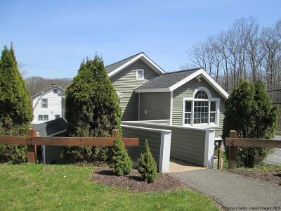 Dutchess County, Orange County, Sullivan County, Ulster County Rental For Rent: 1314 Route 28 #3