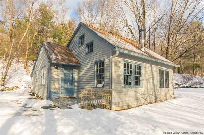 Dutchess County, Orange County, Sullivan County, Ulster County Single Family Home For Sale: 1227 Turkey Hill Road