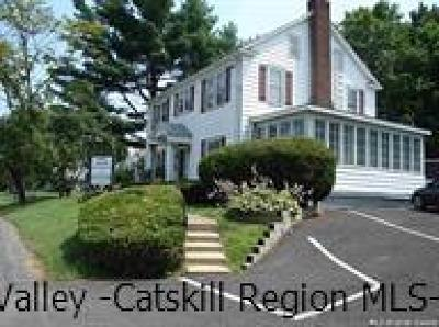 Orange County, Sullivan County, Ulster County Rental For Rent: 12 Lake Road #A