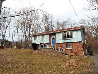 Saugerties Single Family Home For Sale: 114 Kelly Rd