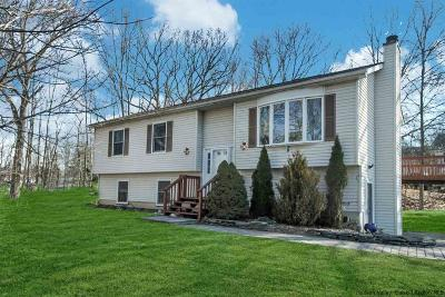 New Paltz Single Family Home For Sale: 35 Bonticou View
