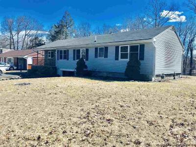Saugerties Single Family Home For Sale: 133 Barclay Street